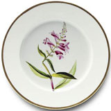 Botanique Dinnerware by Alberto Pinto | Gracious Style