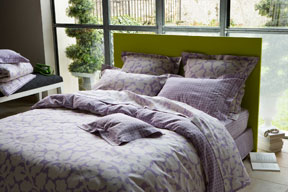 Ariane Sheets, Duvet Covers, Shams and Bedskirts in Cotton Sateen  | Gracious Style