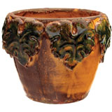 Amber Leaf Border Cachepot by Vietri | Gracious Style