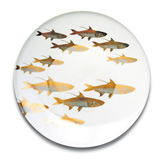School of Fish Gold Dinnerware by Caskata | Gracious Style
