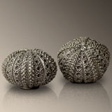 Sea Urchin Salt & Pepper Shakers| Gracious Style