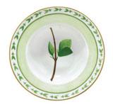 Verdures Rim Soup Plate  | Gracious Style
